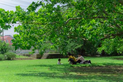 園内の芝生と木影のエリアでリラックスする赤ちゃんとお父さん、お母さん