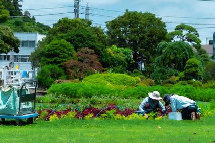 園内の花壇を手入れするスタッフ