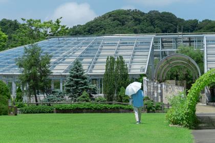 園内の温室グリーンハウスに向かって歩く日傘を持った女性
