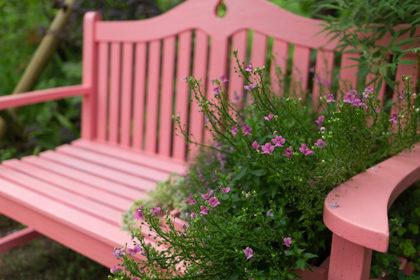 公園にある木製のピンクのベンチに小さな紫色の花がたくさん咲いている鉢が置かれている様子